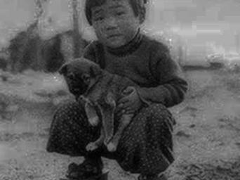 hiroshima-little-boy